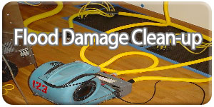 flood-damage-clean-up