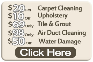 Carpet Cleaning Plano TX - Oriental Rug